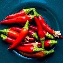 Homegrown chillies